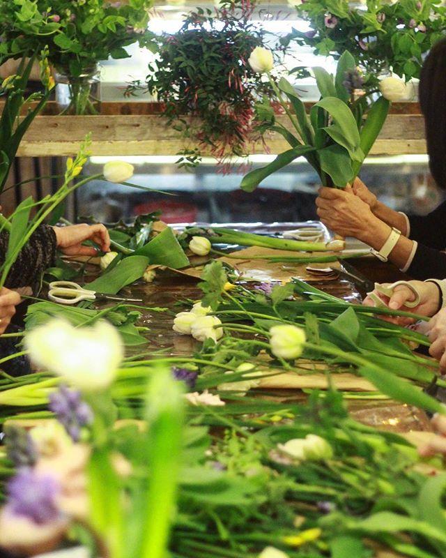 2/23(Sat.)「ヒヤシンスのブーケ」午前の部(1)..菜の花を使う予定でしたが市場になく…。花材がかなり変わってしまいましたが、皆さん楽しんで作ってくださいました。花を束ねるのが初めてという生徒さんもいらっしゃって、難しい内容だったかもしれませんがそれぞれとっても可愛く仕上げられたので驚きました。生徒さんの作品をラッピングする作業がまた、幸せで。贈り物にされたいからとアレンジにしてくださった方もいらっしゃいましたがこちらもとっても可愛い。皆さんお疲れ様でした。また、ぜひ遊びにいらしてくださいね。..#flowerlesson #cerise #警固 #rossarossa #ヒヤシンス #bouquet #natural #ジャスミン