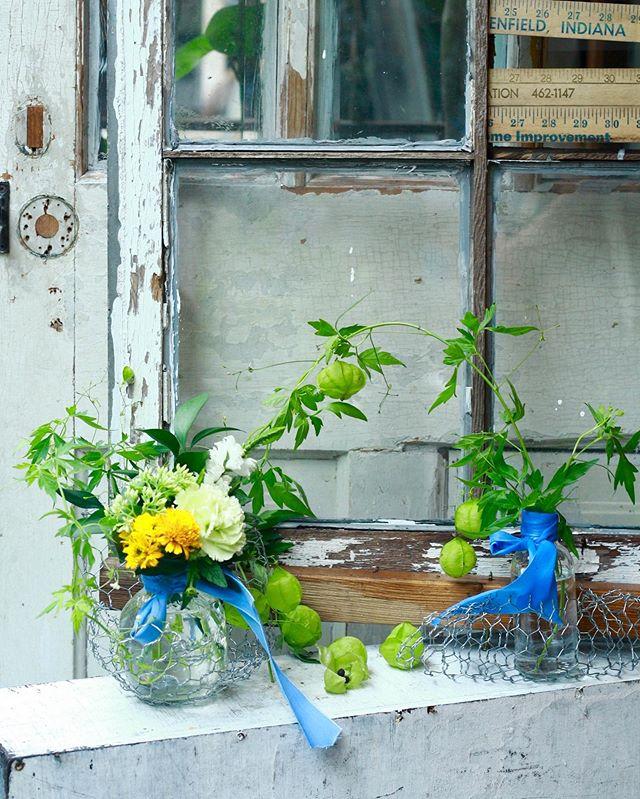 7.20(Sat.)「蔦と花のフェンス」.午前の部。いつもお花をとても大切にしてくださるお二人で、お庭の植物のお話などをしながら穏やかな時間となりました。使用したフウセンカズラの中に包まれた種を植えてみようかなとおっしゃっていて、そんなお話がまた聞けるのも愉しみです。曲線を活かしつつ、素敵な作品になりましたね!以前からとてもお上手でしたが、回数を重ねる毎に縛られない生け方をされるようになったなあと感慨深く思ってます。また、次回!ありがとうございました!#cerise #barrosarosa #警固  #flowerlesson #natural