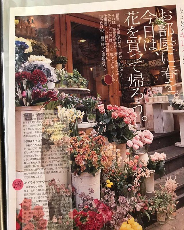 良いお天気に恵まれました◎今日はceriseの片付けをして参りました。18年前に、愛する我らのボス桜子が『日常に花を』とスタートしたけやき通りのcerise。時を経て、形を変えて、色んなスタッフに愛され、地元のお客様に愛され、わざわざ足を運んでくださる遠方のお客様に愛され、幸せな18年間だったと思います。私はそのうちの数年しか知りませんが、18年というボスの築きあげてきた年月の分だけお客様がいらっしゃる事を誇りに思って働いてきました。荷物を整理しながら、至る所にありがとうを伝えました◎年季の入ったテーブルや、椅子。花器。ロッサロッサの空間。きっと私の入る前からずっとずっと、オーナーやスタッフの想いと共に歩んできた備品たち。ありがとうございました。ceriseは薬院駅の裏、degasへと移転します。スタッフが一堂に集まり、今までより更にパワーアップして皆様の元へお花を、愛をお届けする事になると思います。18年間ありがとうございました◎これからもceriseをどうぞよろしくお願いします。ご注文やお問い合わせはdegasへよろしくお願いします。